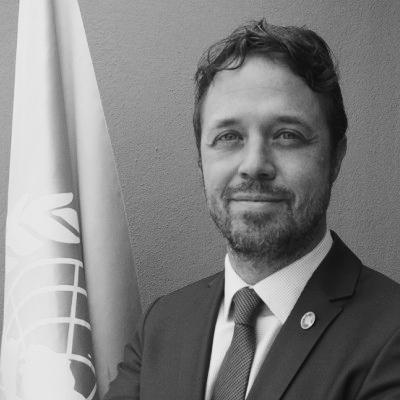 Claudio Tomasi Resident Representative, a.i UNDP in Turkey